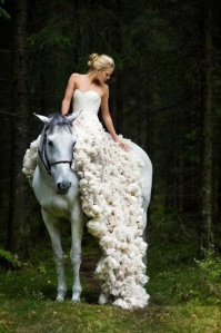 serendipitybridalwear.wordpress.com horse